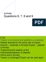 Paper 2 Perak (Essay Answer 2008)
