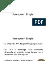 89891987 Perceptron Simple