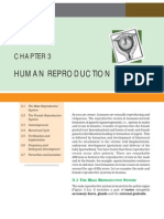 03human Reproduction