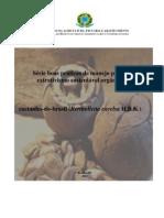 Boas Praticas de Manejo Para o Extrativismo Sustentavel Da Castanha Do Brasil