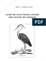 Raccolta Carfagnini