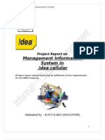 Information System Management of Idea Cellular Ltd.