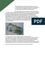 Tugas Filter Teknik Kimia
