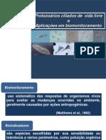 protozoários como bioindecadores