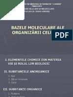bazele_moleculare (1)