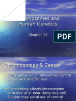 ch12 lecture(Chromsomes and Human Genetics)