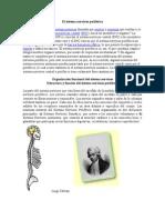 El sistema nervioso periférico
