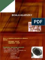 Aujeszky Curs