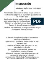 Paleocología