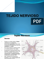 histologiageneral-tejidonervioso-090416221538-phpapp02