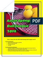 2014 Sponge Ball League