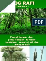 p & p Tumbuhan Dan Hidupan Liar Ting 1 (Pendidikan Khas )