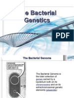 Microbiology Lecture - 05 Bacterial Genetics