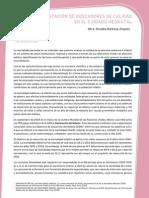 INDICADORES DE CALIDAD NEONATAL.pdf