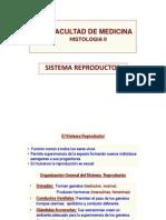 Histologia II 2013 Sistema Reproductor