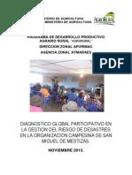 DGP  mestizas.pdf