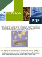biomasa_2