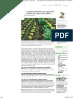 Conheça os benefícios que a agricultura orgânica traz para o meio ambiente
