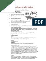 Grasshopper Information