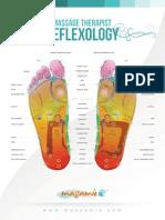 Massamio Reflexology Chart