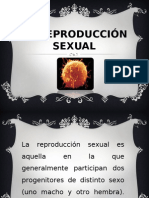 la reproduccion sexual.ppt