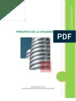 principiosdelaorganizacion-101017131633-phpapp01