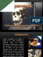 Tafonomia, Huellas de Violencia, Proc. Natur. y Artif.