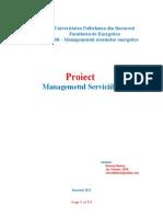 Proiect Managementul Serviciilor