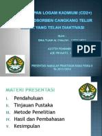 Presentation1 makalah