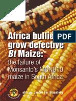 BT Maize Report Oct2013