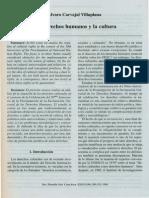 Copia de Los derechos humanos y la cultura.pdf