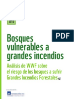Bosques vulnerables a grandes incendios WWF 06/2013