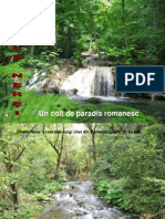 80459814 Cheile Nerei Un Colt de Paradis Romanesc 2