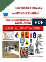 Seguridad  Salud y Ambiente Capitulo i Generalidades [Modo de Compatibilidad]