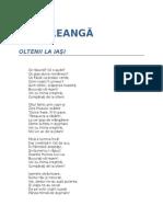 Ion Creanga-Oltenii La Iasi
