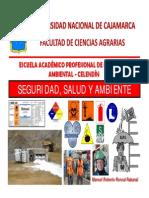 Seguridad  Salud y Ambiente CAPÍTULO XIV PROTECIÓN FRENTE AL RIESGO EPP [Modo de compatibilidad]