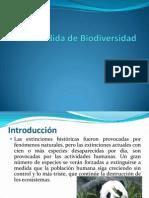 La Perdida de Biodiversidad