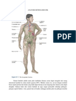 59928696 Anatomi Sistem Limfatik