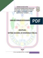 APOSTILA SISTEMA NACIONAL DE SEGURANÇA PÚBLICA - CFSD 2013