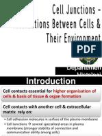K4- Aplikasi Praktikum Cell Junction-Interactions of Cells k4 (3)