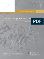 Manual Ph.D. Phage Display Libraries