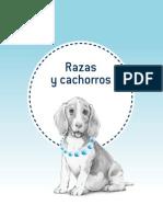 Guia Puppy 1