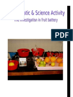 [SCI] Report of Fruit Battery
