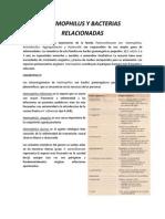 Haemophilus y Bacterias Relacionadas