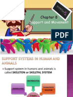 Support System and Movement