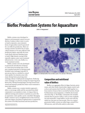 Biofloc Aquaculture | Bacteria | Ammonia