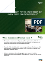 Project Facilitation