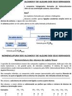 Alcanos e seus derivados.pdf