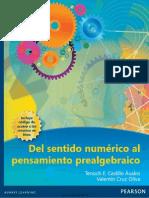 Del Sentido Numerico Al Pensamiento Prealgebraico, 1ra Ed