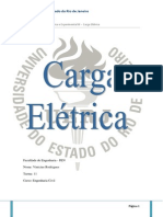 (128625058) Relatório Carga Elétrica